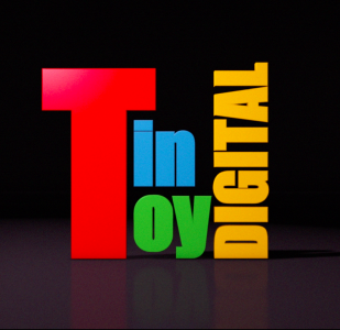 Voice Over Demos Reels Cheapest Price in The City - Tin Toy Digital